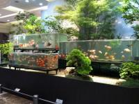 JR名古屋高島屋2012涼感装飾