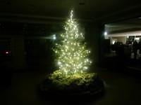 JR名古屋高島屋 クリスマス 2012